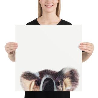 Cute Koala Poster - 18x18 by Pablo Prada